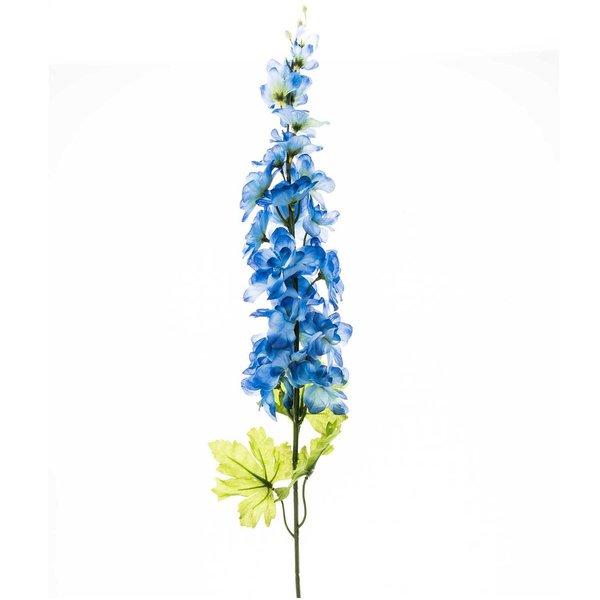 Rittersporn blau 75cm