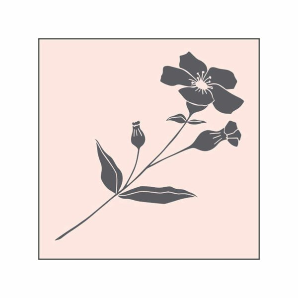 May&Berry Stempel Wildblume nude 45x45mm
