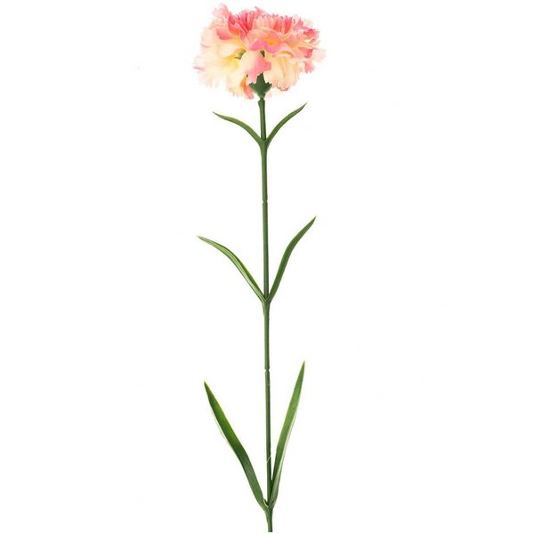 Nelke rosa 60cm