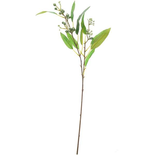 Eukalyptuszweig mit Knospen 68cm