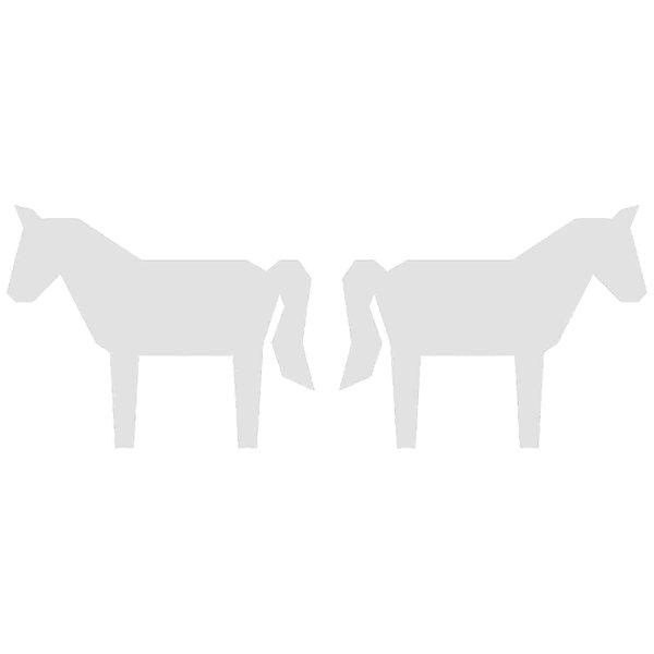 Rico Design Cardboard Set Pferde 6 Stück