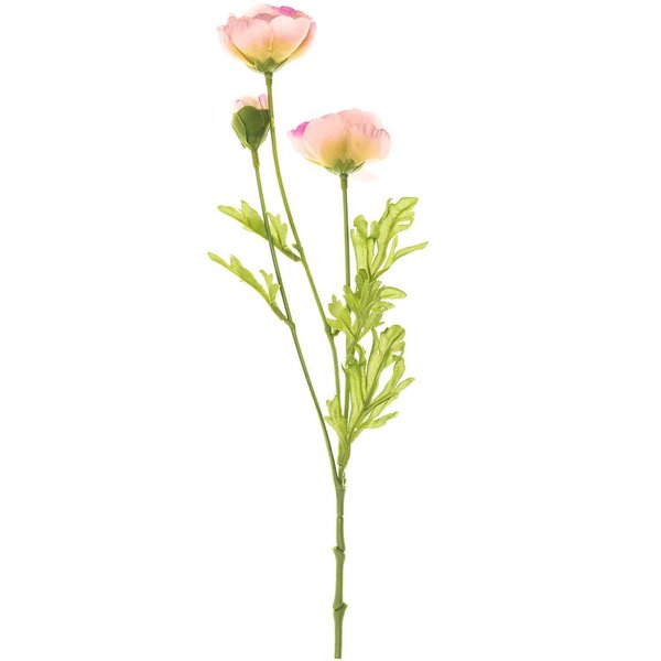 Ranunkel rosa 42cm