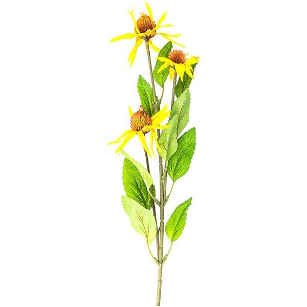 Sonnenhut mit 3 Blüten gelb 60cm