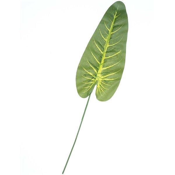 Dieffenbachienblatt grün 52cm
