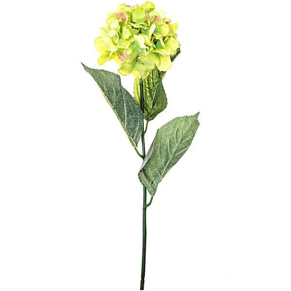 Hortensie grün 72cm