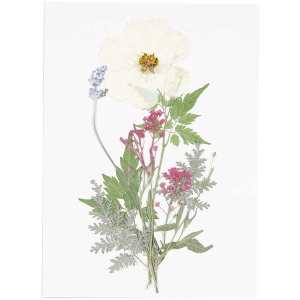 Made by Me Gepresste Blüten Mix Set weiß-violett 7 Stück