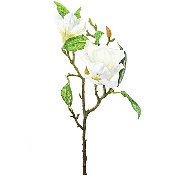 Magnolie creme-weiß 40cm