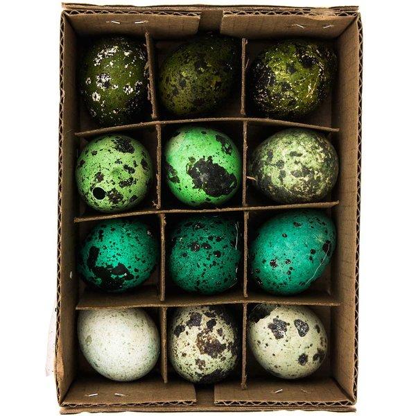 Wachteleier ausgeblasen grün-blau 3cm 12 Stück