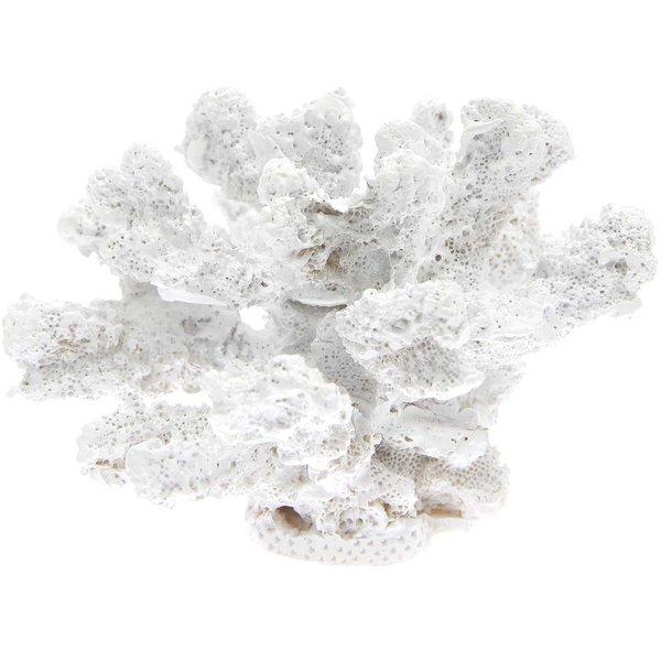 Ohhh! Lovely! Koralle aus Polyresin weiß 14x11x9cm