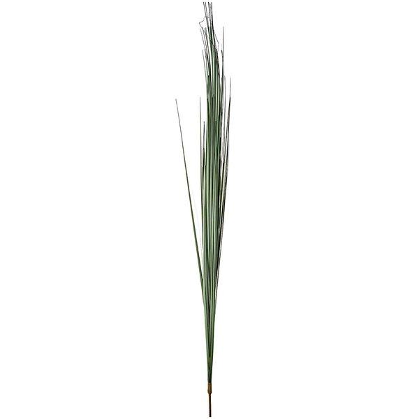 Zwiebelgras 97cm