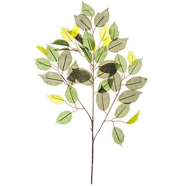 Ficus Zweig grün 59cm