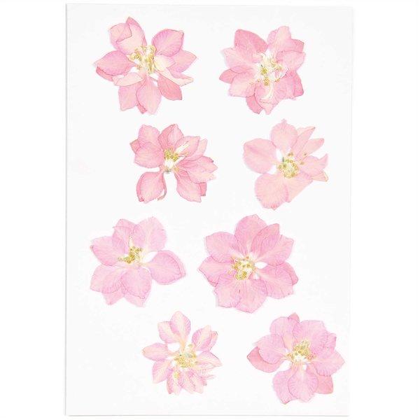 Made by Me Gepresste Blüten Rittersporn rosa 8 Stück